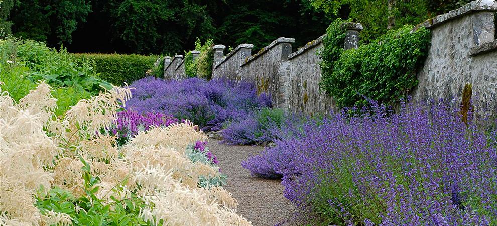 Leith Hall Gardens